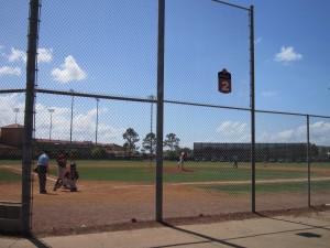 Backfield #2
