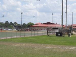 Baseball action from afar