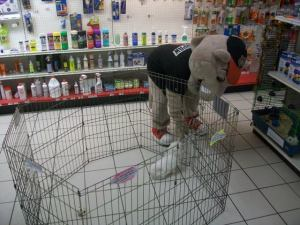 SouthPaw Pet Store 1