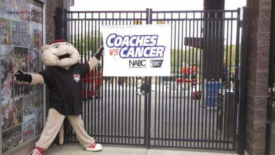 SouthPaw Coaches Vs Cancer