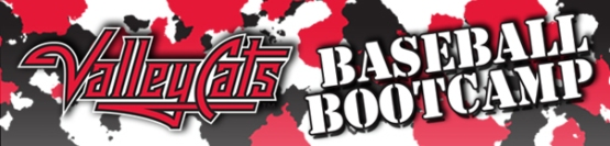 Baseball Bootcamp Web Header