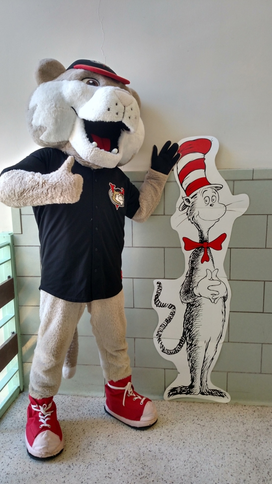 SouthPaw Cat in the Hat WEB