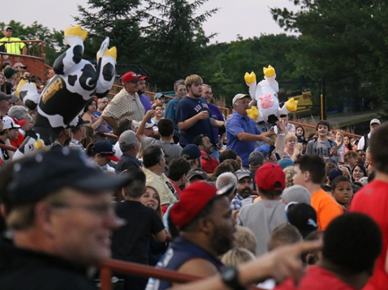 Four lucky fans took home inflatable cows!
