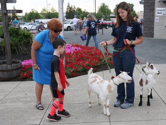 "A pair of goats greeted fans as they entered ""The Joe!"""